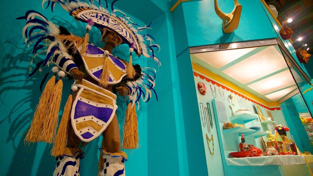 Museo de Las Américas que incluye vistas interiores y cultura indígena