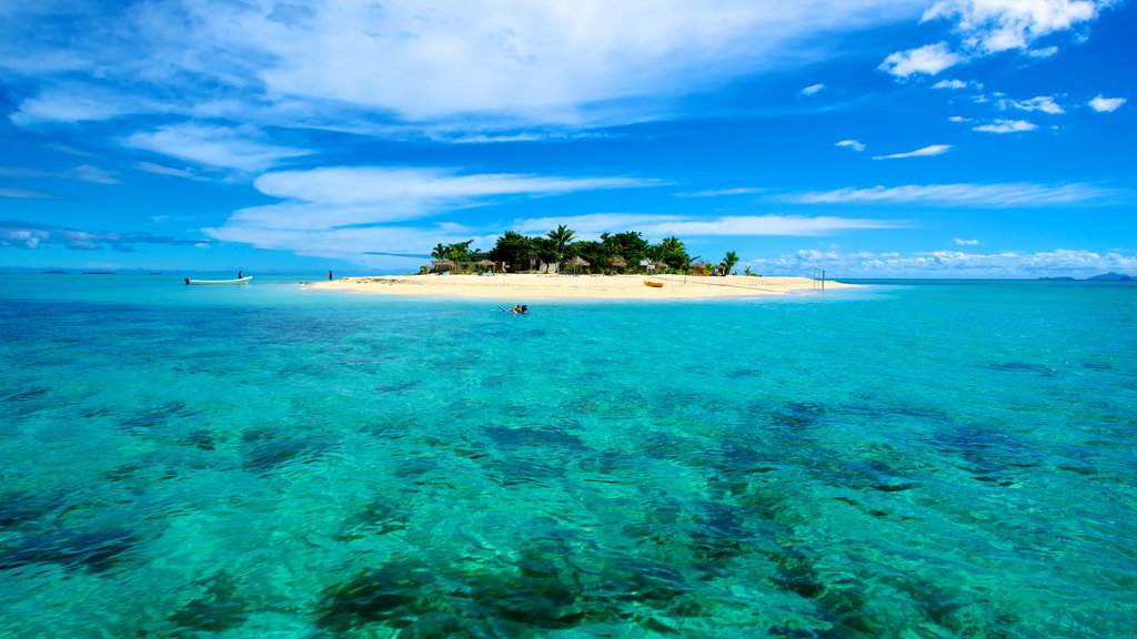 Fiji featuring island images and tropical scenes