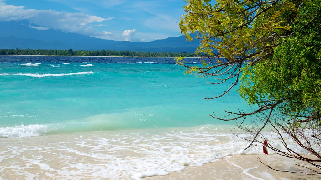 Gili Islands which includes a beach