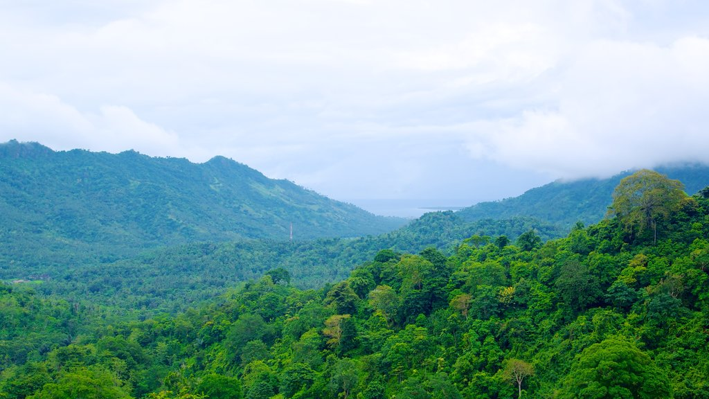 Lombok which includes mountains and forest scenes