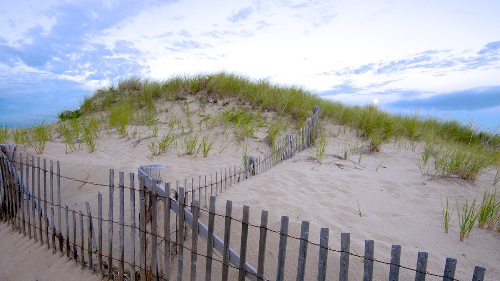 Race Point Beach featuring a beach