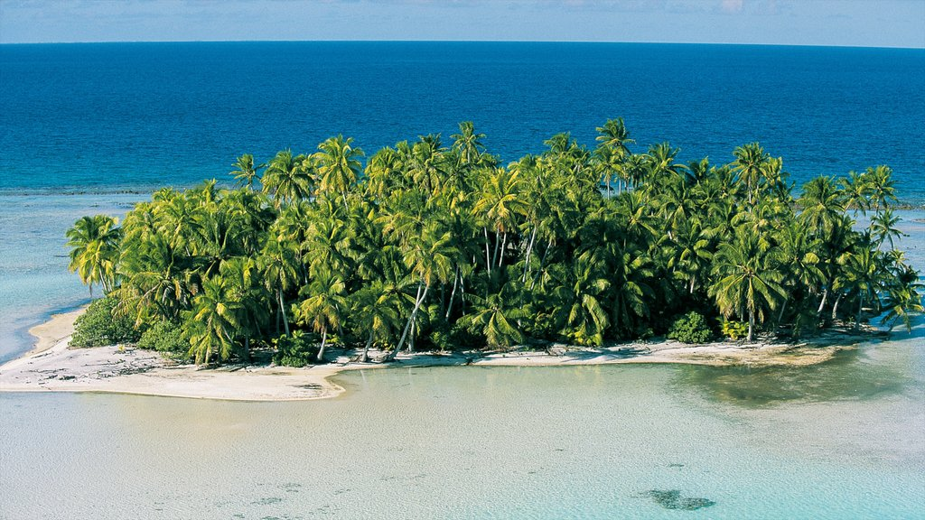 Rangiroa que incluye escenas tropicales, vistas de una isla y vistas de paisajes