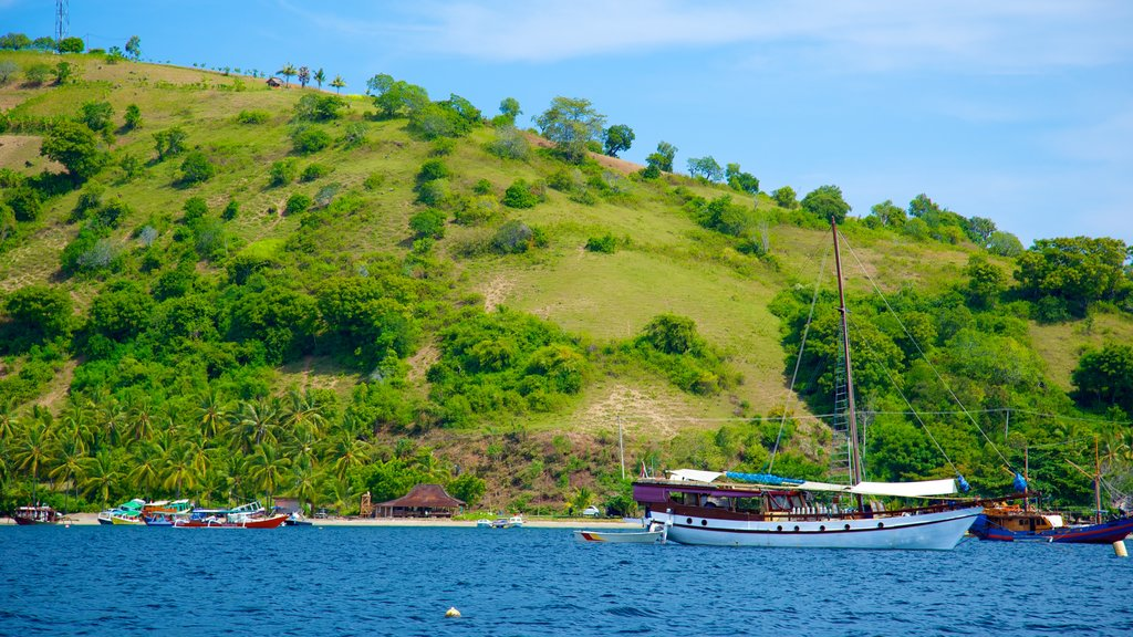 Gili Islands showing mountains, general coastal views and boating