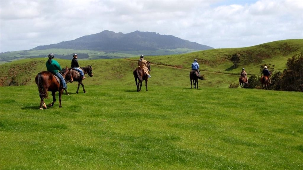 Raglan showing horseriding, land animals and mountains