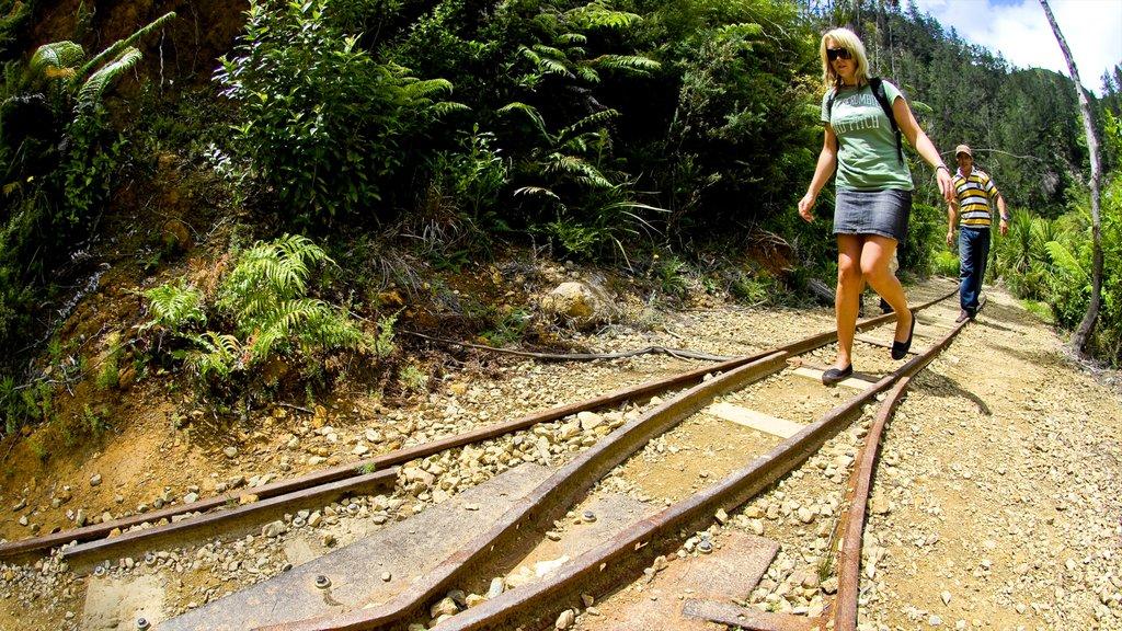 Karangahake Gorge showing railway items and hiking or walking as well as a couple