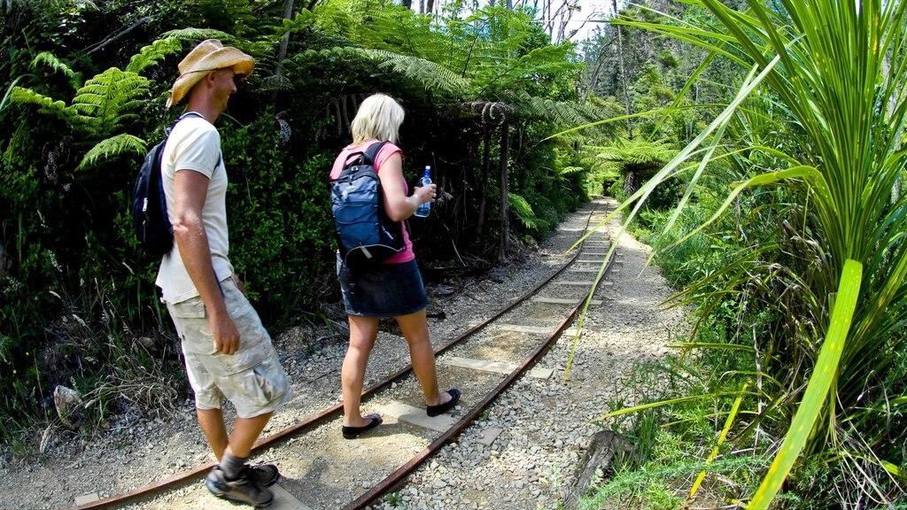 Karangahake Gorge showing tropical scenes, hiking or walking and railway items