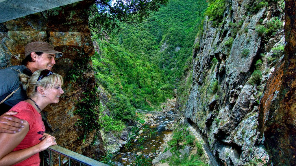 Karangahake Gorge featuring views as well as a couple