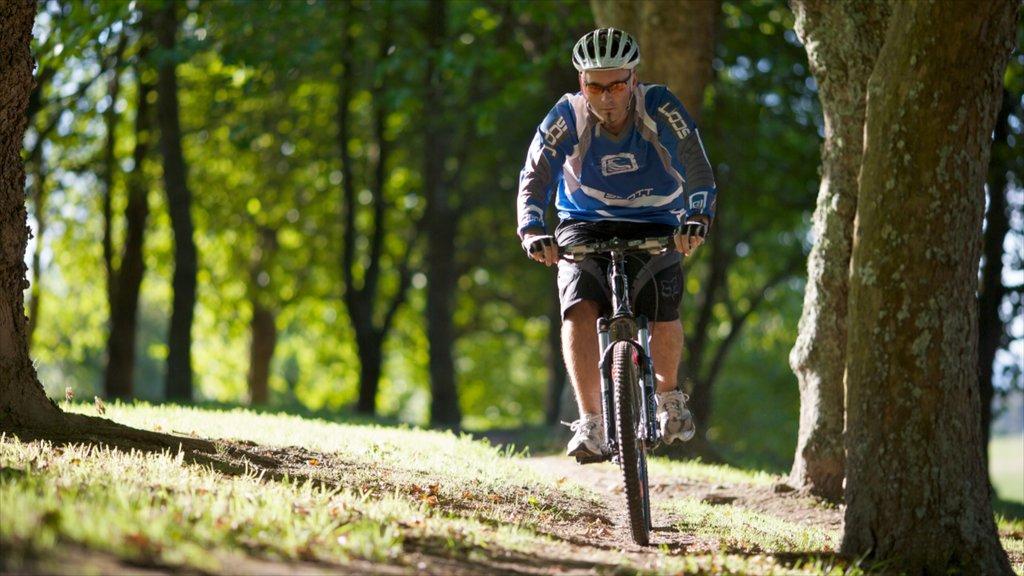 Hamilton which includes mountain biking as well as an individual male