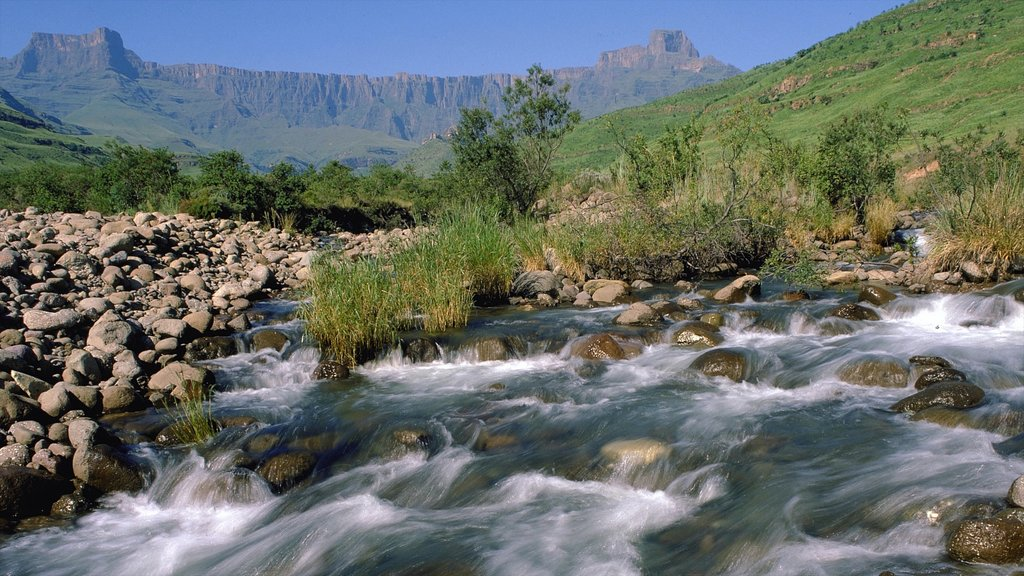 Drakensberg Mountains showing a river or creek, mountains and rapids