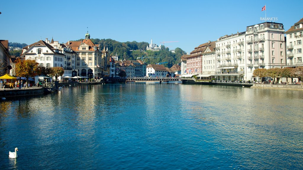 Old Town Lucerne showing a city, a lake or waterhole and a coastal town