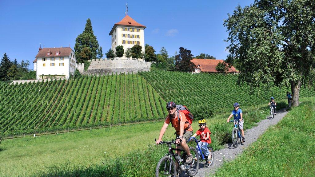 Lucerna que incluye tierras de cultivo, una pequeña ciudad o pueblo y ciclismo