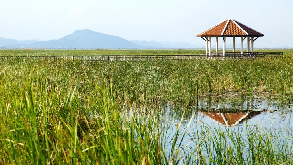 Sam Roi Yot National Park which includes landscape views, tranquil scenes and wetlands