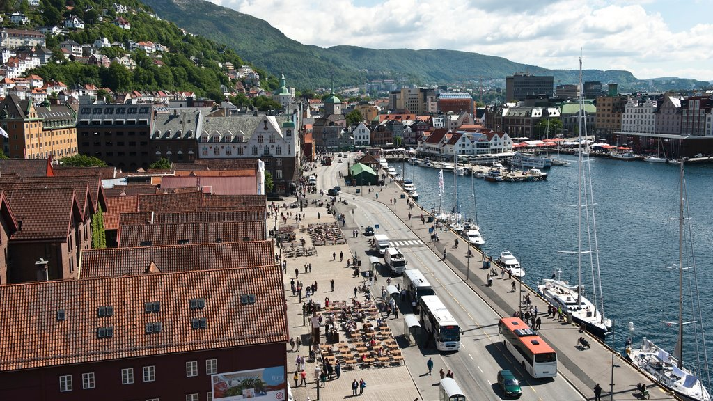 Bryggen showing street scenes, a city and a bay or harbor