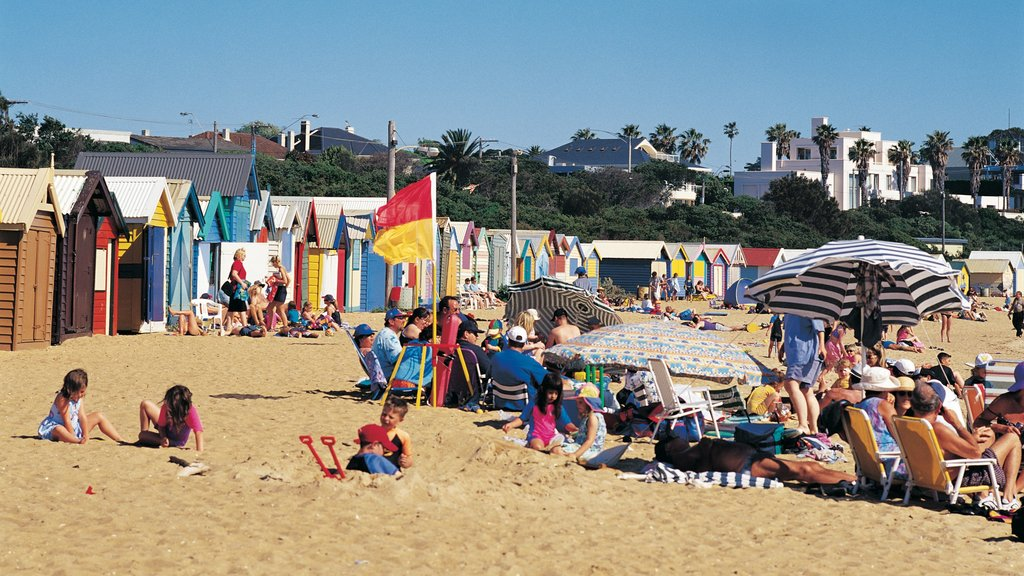 Brighton Beach featuring a sandy beach as well as a large group of people