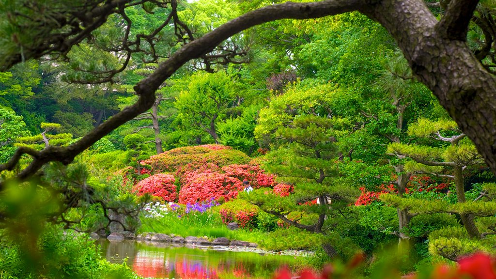 Tennoji Park featuring landscape views, a garden and a pond