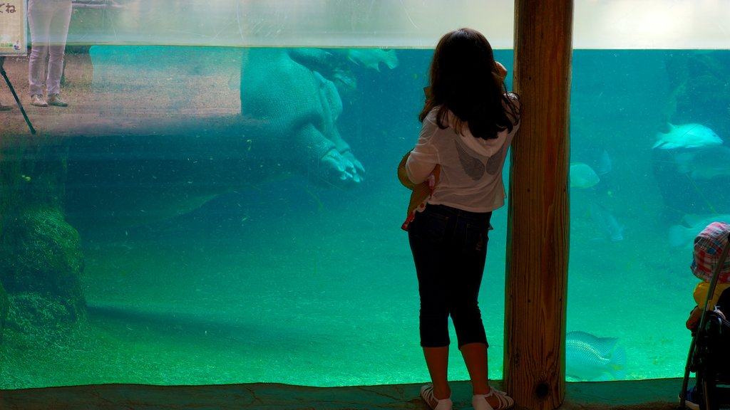 Tennoji Zoo featuring zoo animals, marine life and interior views
