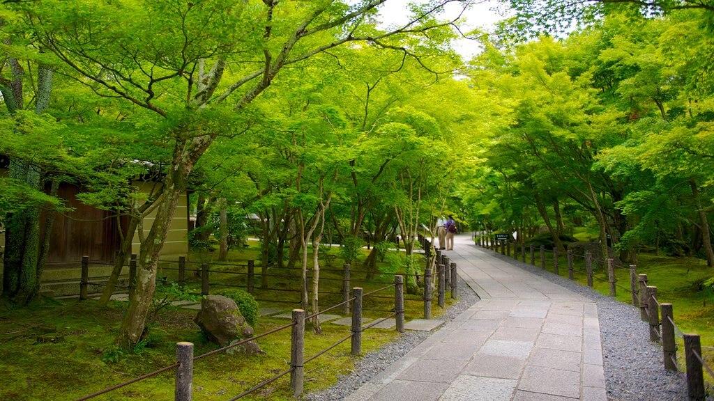 Okazaki featuring a park