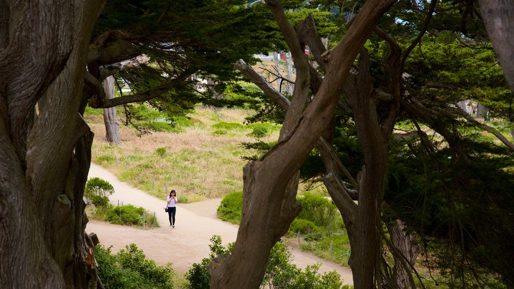 Coastal Trail which includes a park as well as an individual femail