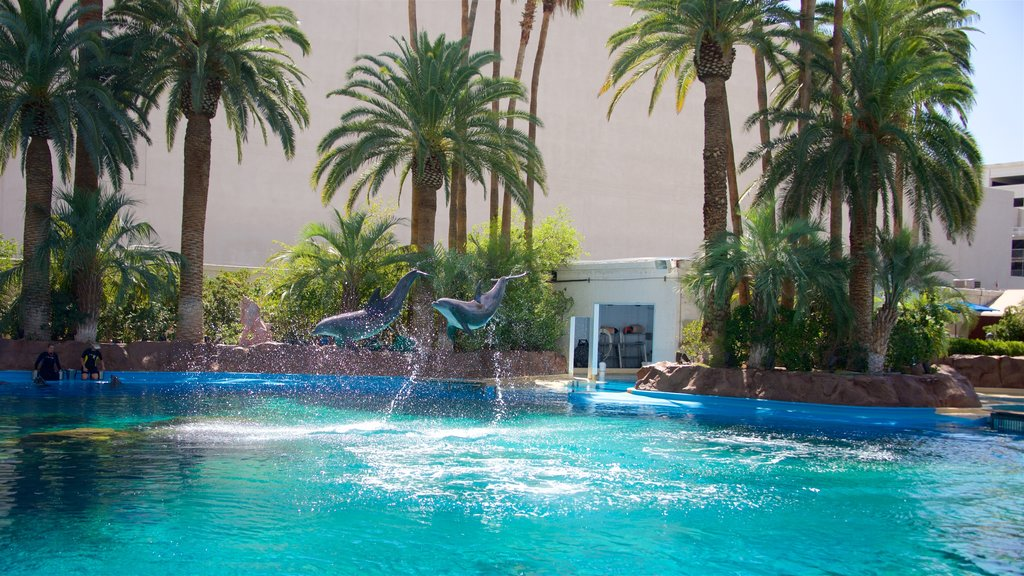 Mirage Casino featuring marine life and performance art