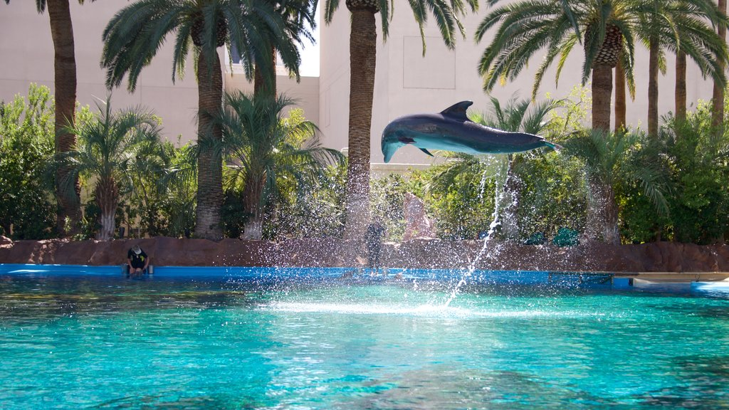 Mirage Casino which includes performance art and marine life