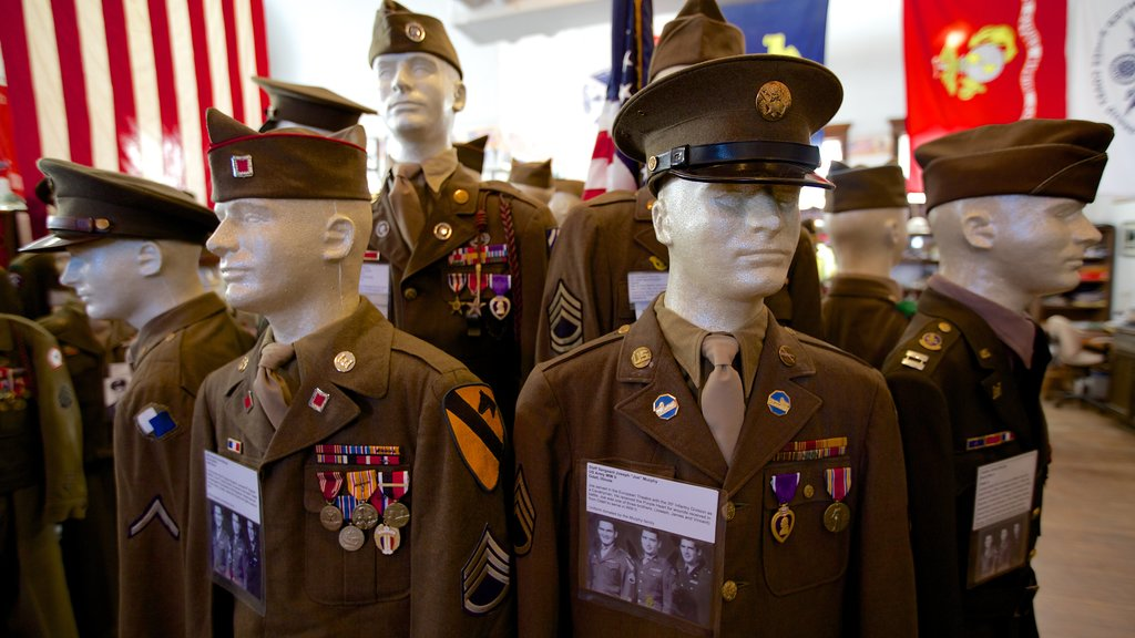 Livingston County War Museum showing interior views