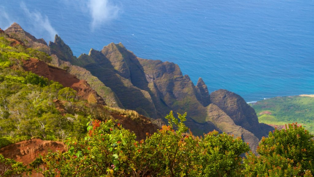 Kalalau Lookout which includes rugged coastline, general coastal views and landscape views
