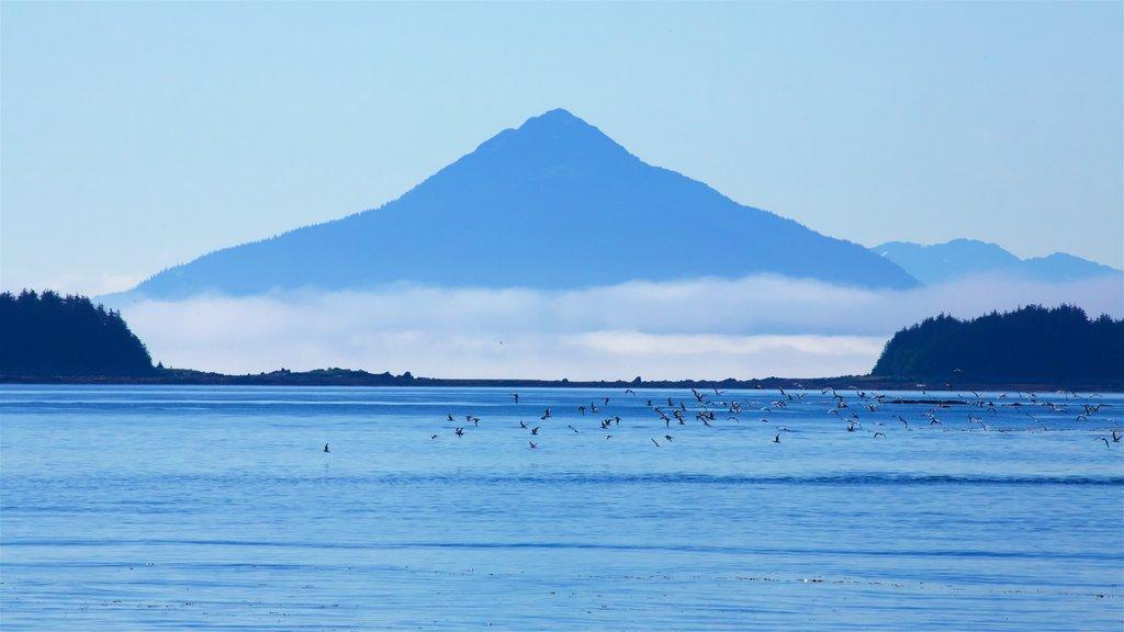 Parque marino estatal de la bahía Funter que incluye montañas y un lago o abrevadero