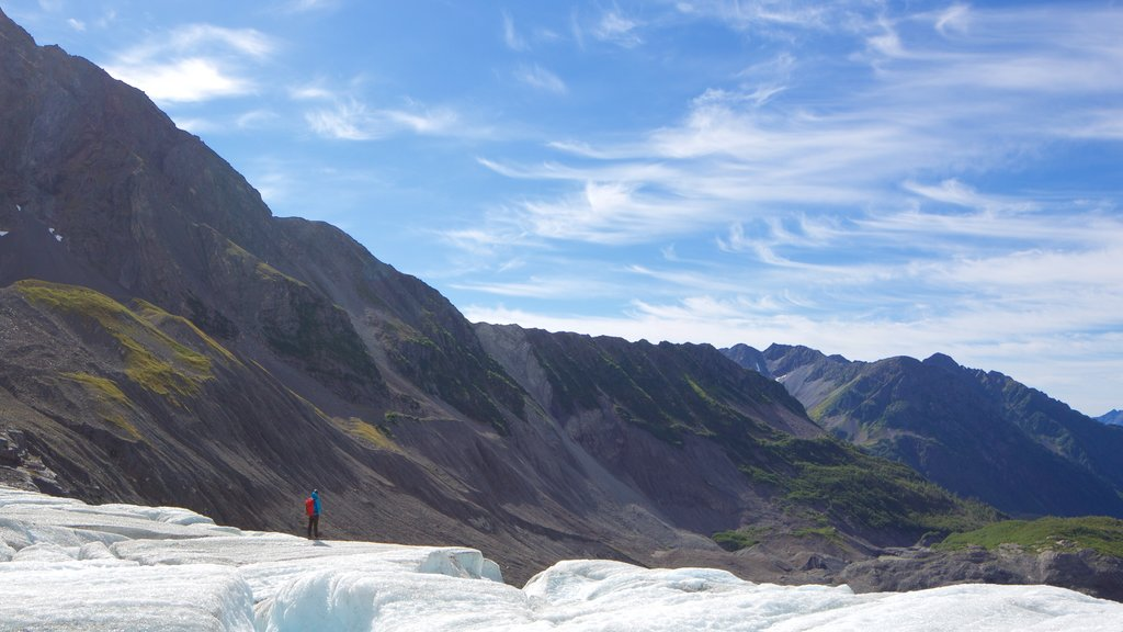 Godwin Glacier featuring tranquil scenes and mountains