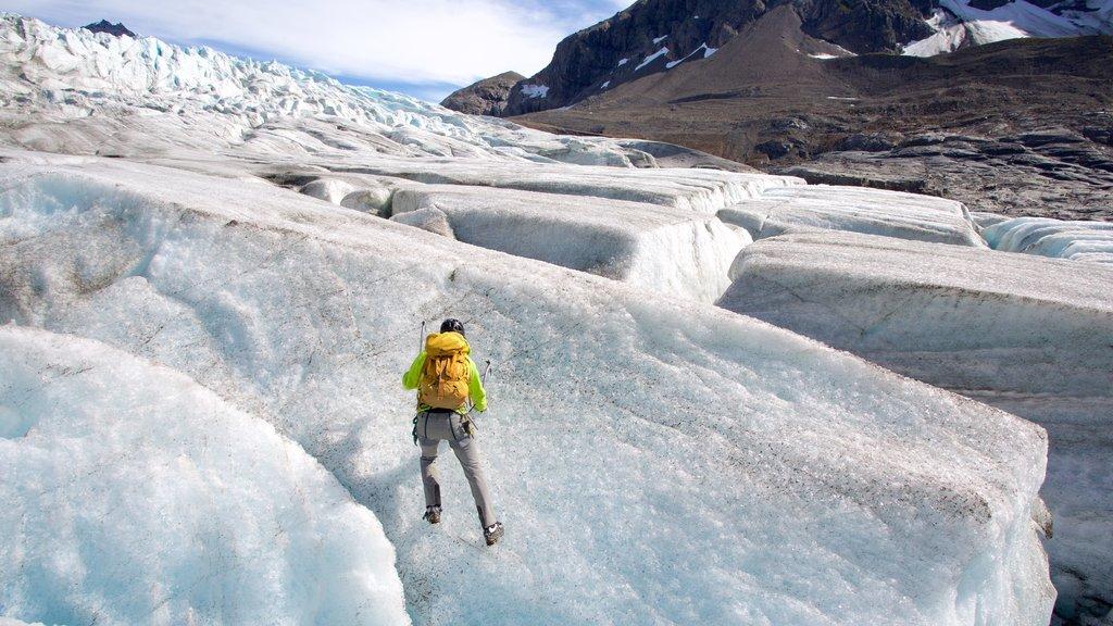 Godwin Glacier featuring climbing