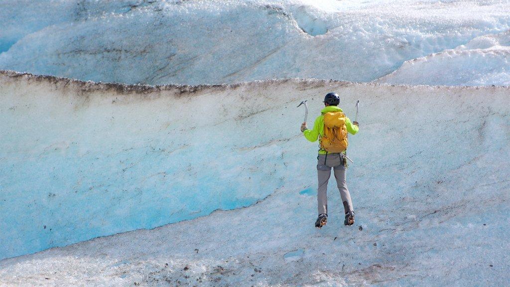 Godwin Glacier showing climbing as well as an individual male