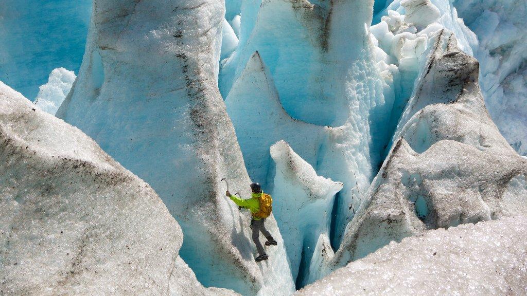 Glaciar Godwin mostrando alpinismo y también un hombre