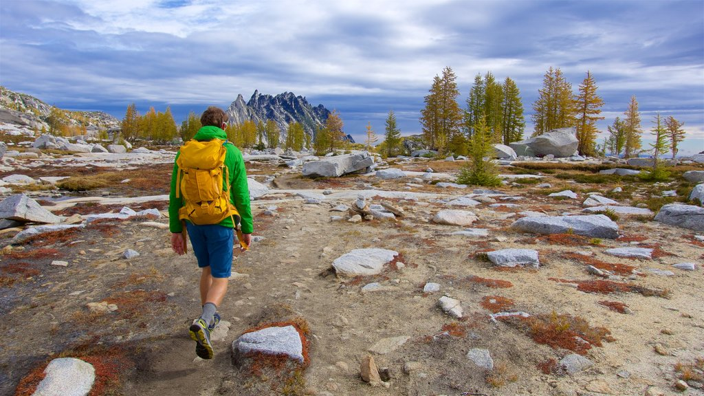 The Enchantments which includes tranquil scenes and hiking or walking as well as an individual male