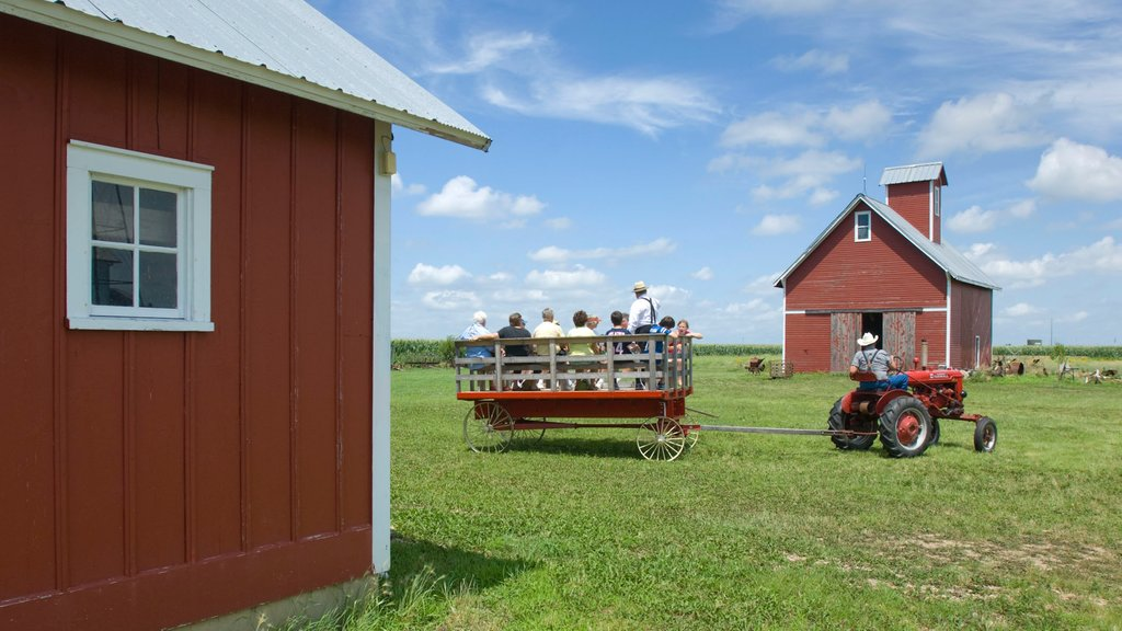Wessels Living History Farm showing farmland as well as a small group of people
