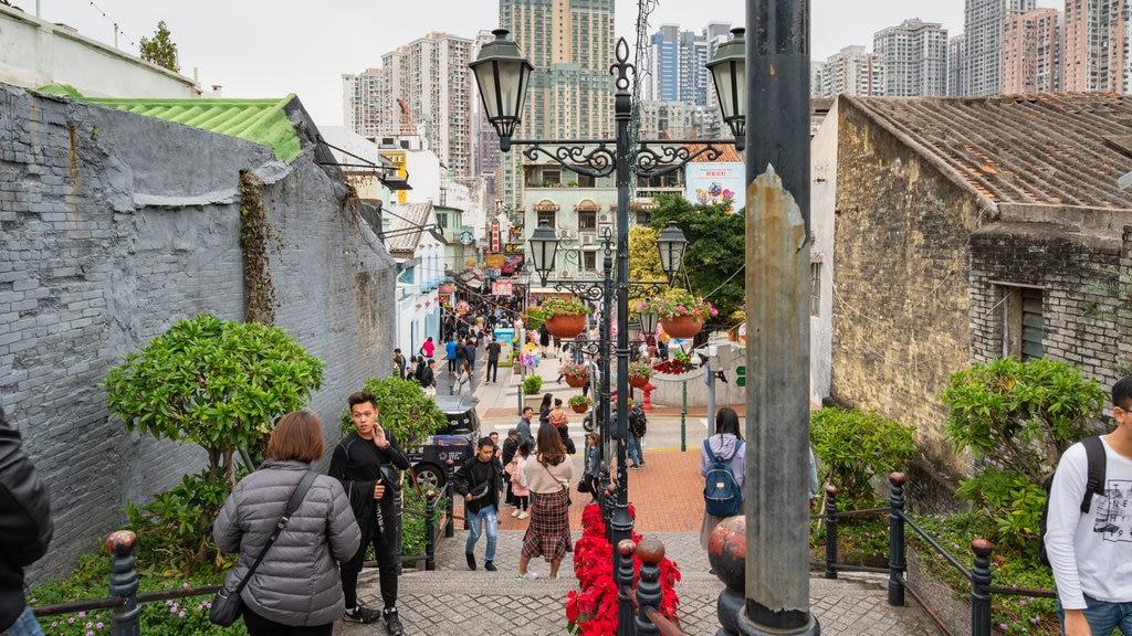 Taipa showing street scenes