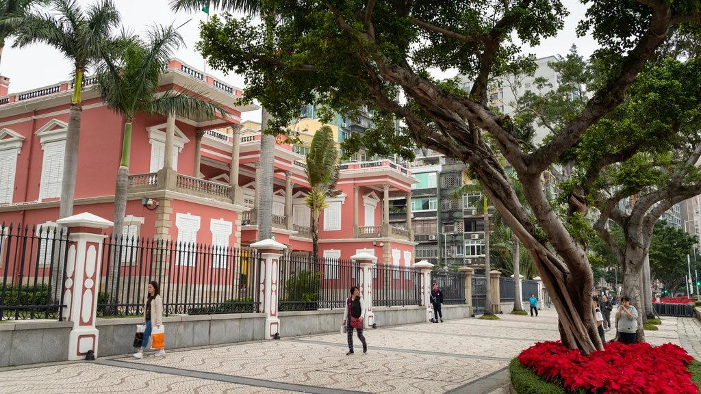 Macau City Centre showing flowers