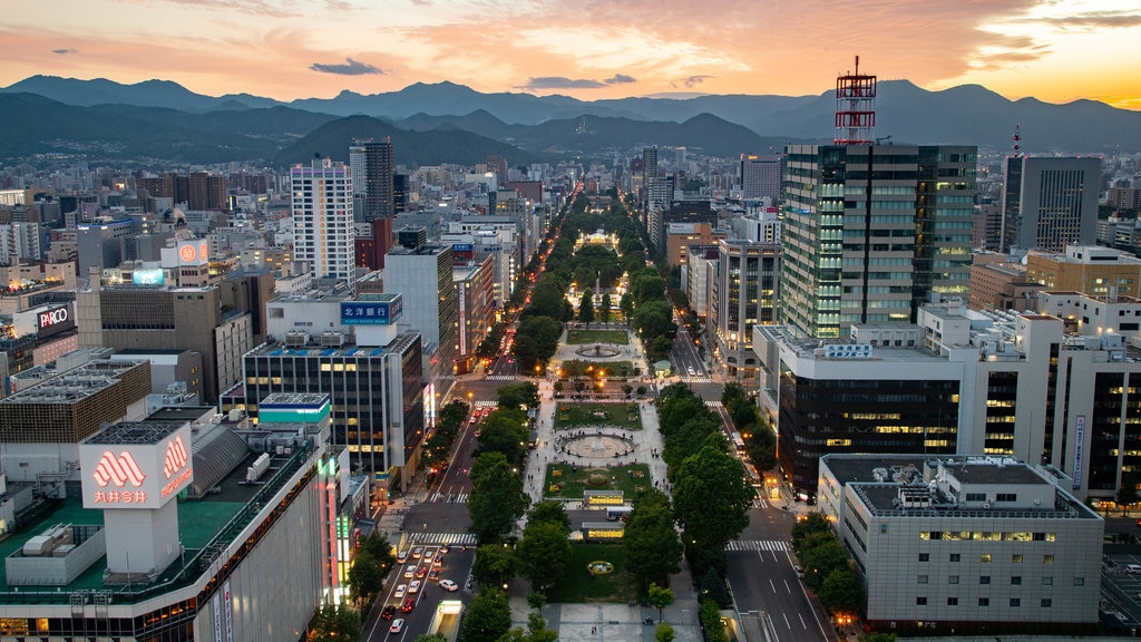 Torre de televisión de Sapporo ofreciendo una puesta de sol, una ciudad y vistas de paisajes