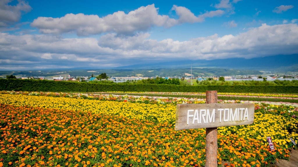 Farm Tomita featuring signage, farmland and wildflowers