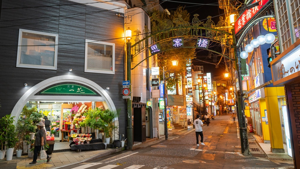 Kyushu and Okinawa featuring night scenes, a city and street scenes