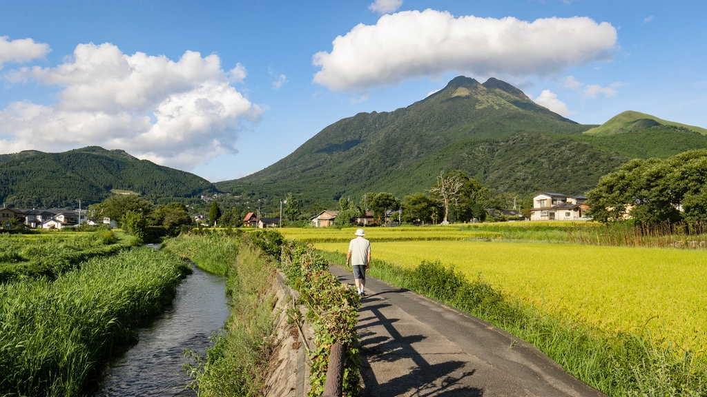 Kyushu and Okinawa which includes tranquil scenes, a river or creek and mountains