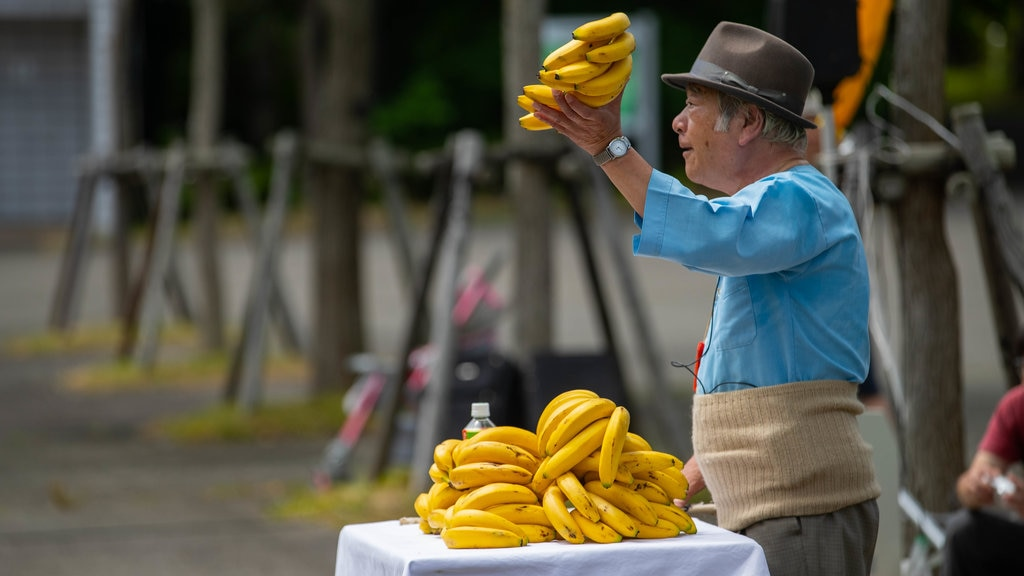 Pueblo histórico de Hokkaido mostrando comida y también un hombre