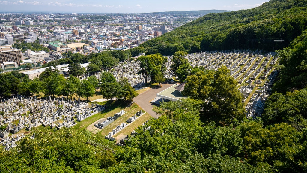 Moiwa Ropeway showing a city, landscape views and a cemetery