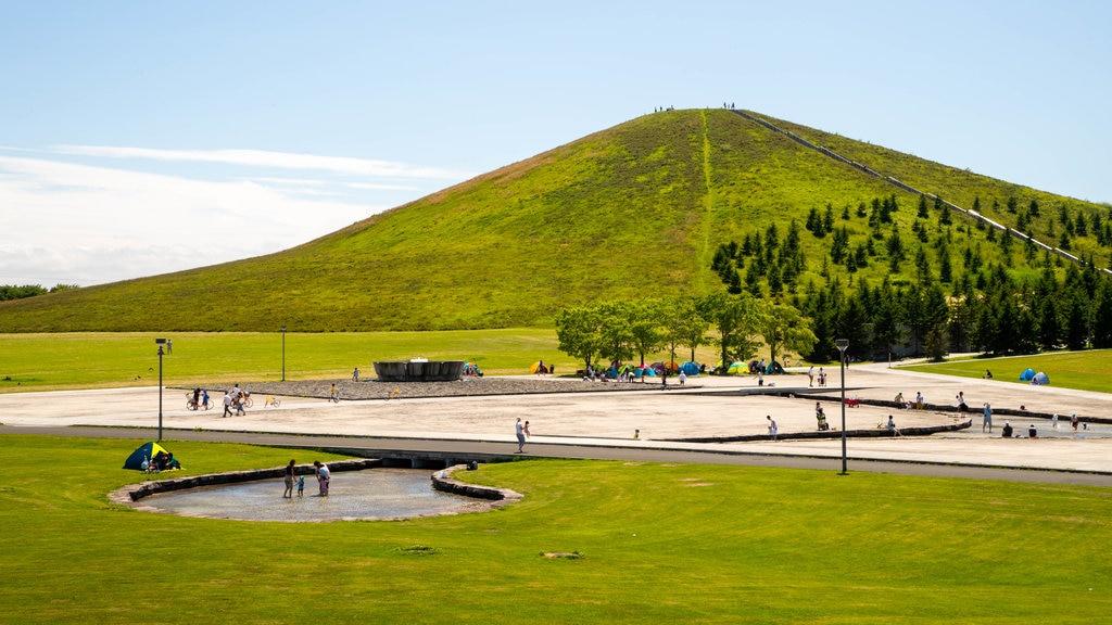 Moerenuma Park featuring a garden and mountains