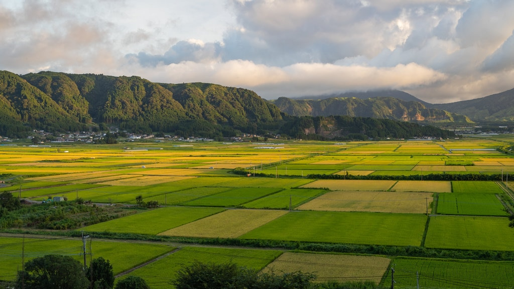 Aso featuring farmland, landscape views and a sunset