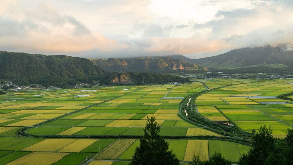 Aso showing a sunset, mountains and farmland