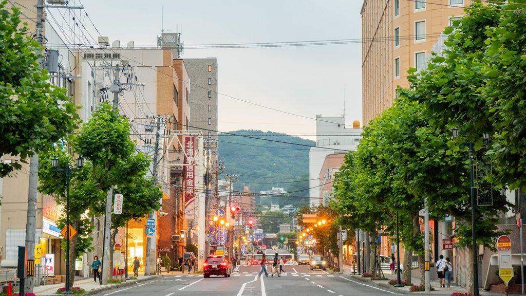 Otaru mostrando una ciudad y escenas urbanas