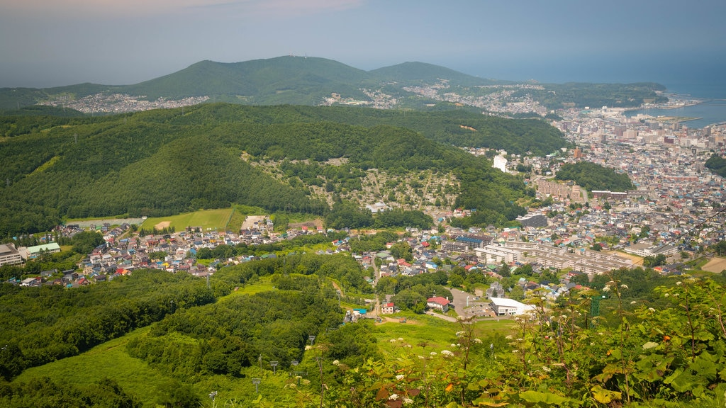 Mount Tengu which includes tranquil scenes, a coastal town and landscape views