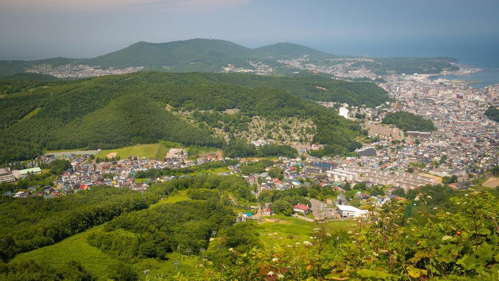 Monte Tengu mostrando una ciudad costera, vistas de paisajes y escenas tranquilas
