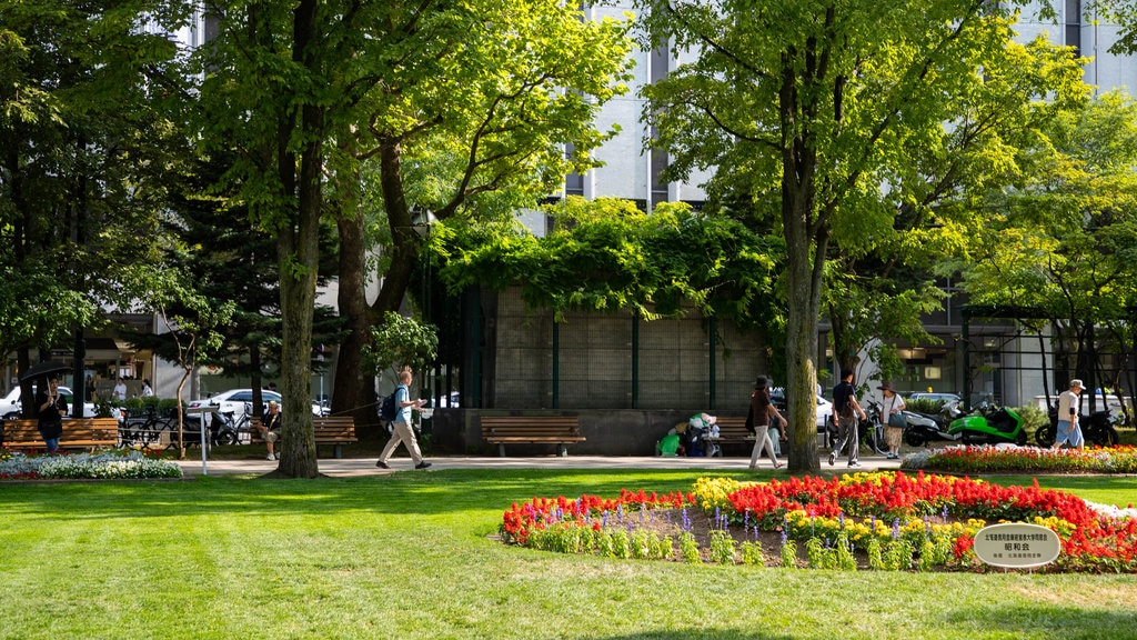 Odori Park which includes flowers, a garden and wildflowers