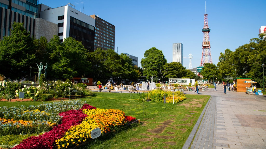 Odori Park which includes flowers, wildflowers and a park