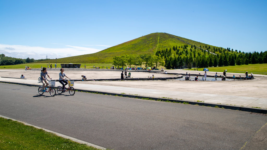 Moerenuma Park showing landscape views and road cycling as well as a couple